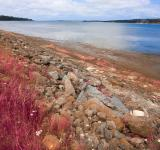 Free Photo - PEI Coastal Scenery - Pastel Pink HDR