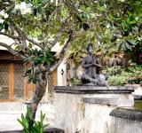 Free Photo - Buddha and tree