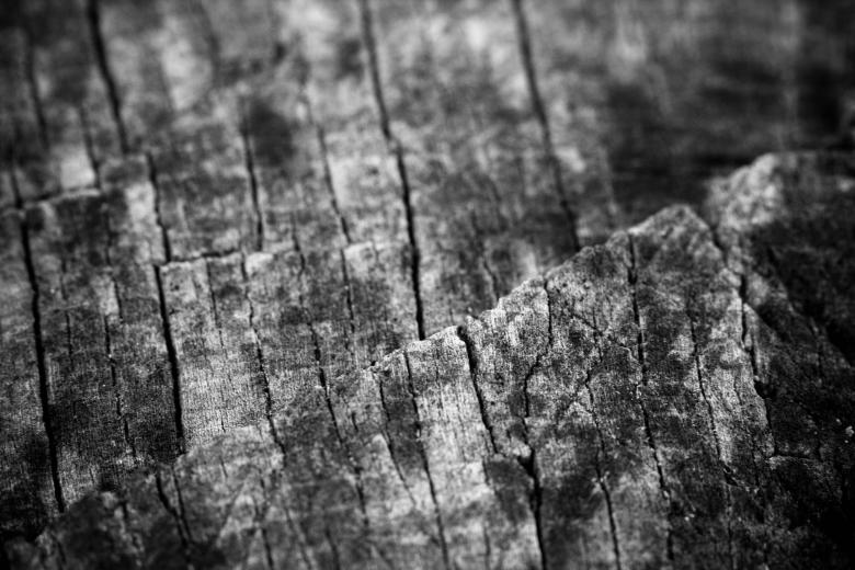 Free Stock Photo of Old wood Created by Alen