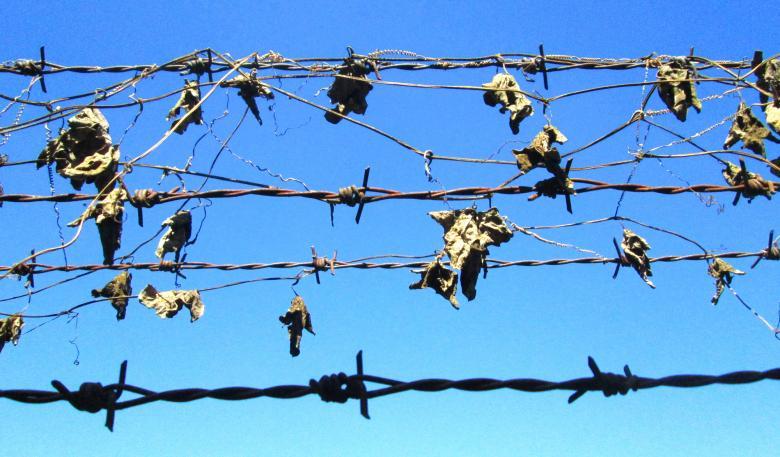 Rusty barbed wire Free Photo