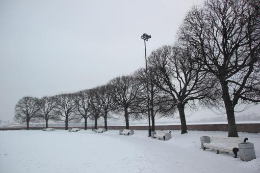 Park in winter - Free Stock Photo