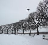 Free Photo - Park in winter