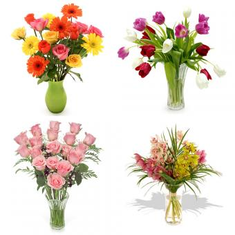 Bouquets of flowers - Free Stock Photo