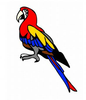 Parrot clipart - Free Stock Photo