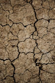 Cracked Mud Texture - Free Stock Photo