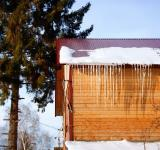 Free Photo - Icicles