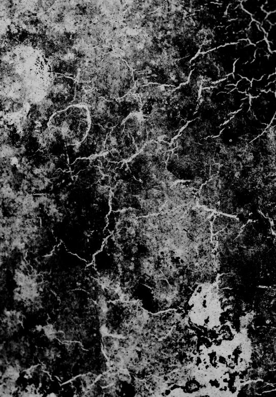 Free Stock Photo of Cracked Grunge Overlay Created by Free Texture Friday