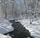 Free Photo - Snowy Stream