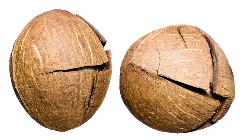 Free Stock Photo of Coconuts Created by 2happy