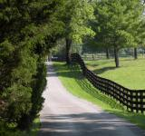 Free Photo - Country Road & Fence