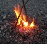 Free Photo - Camp Fire