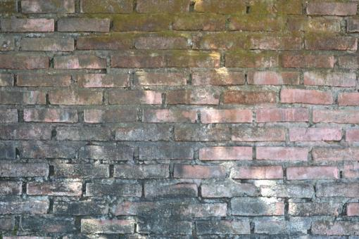 Great Wall texture - Free Stock Photo