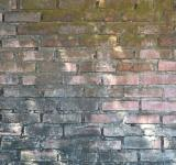 Free Photo - Great Wall texture