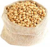 Free Photo - Soy Beans