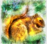 Free Photo - Squirrel Illustration
