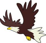 Free Photo - Bald Eagle Clip Art