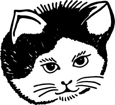 Cat Clipart - Free Stock Photo