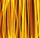 Free Photo - Gold Stalk Texture