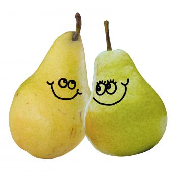 A Pair of Pears - Free Stock Photo