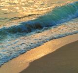 Free Photo - Golden Wave