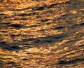 Free Photo - Golden Ocean