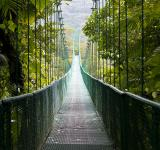 Free Photo - Bridge
