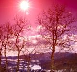 Free Photo - Sun Shines over a Pink Winter Mountain