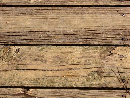 Close-up Of A Wooden Texture - Free Stock Photo