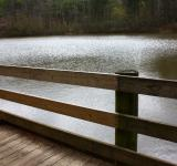 Free Photo - A wooden fence by a lake