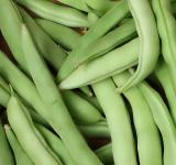 Free Photo - Close-up of freshly picked beans