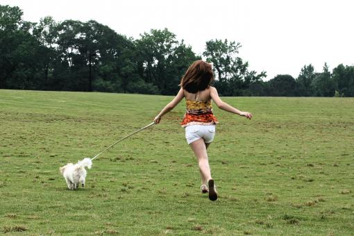 A cute young girl running with her dog - Free Stock Photo