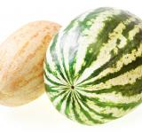 Free Photo - melon and watermelon