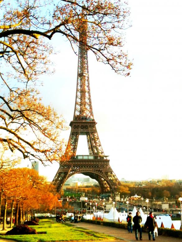 Free Stock Photo of Eiffel Tower in Autumn Created by Nestor Romero