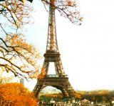 Free Photo - Eiffel Tower in Autumn