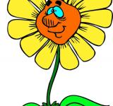 Free Photo - Clipart sunflower