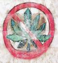 Free Photo - No weeds symbol