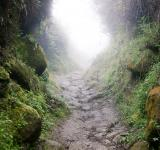 Free Photo - hiking trail going on the mountain in th