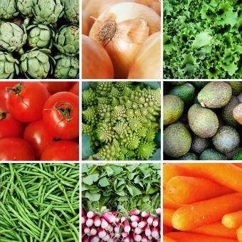Fresh vegetables collage - Free Stock Photo