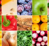 Free Photo - Food collage