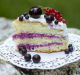 Free Photo - Slice of fresh berry cake
