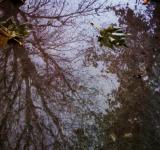 Free Photo - Mirror on the Breaking Storm