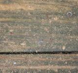 Free Photo - Weathered bench planks