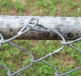 Free Photo - Chain link fence closeup