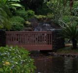 Free Photo - Tropical Garden Bridge