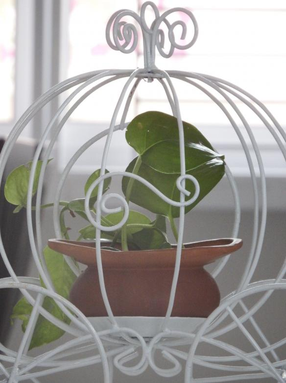 Free Stock Photo of Carriage Plant Holder Created by Ivan