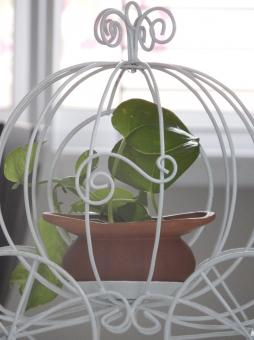 Carriage Plant Holder - Free Stock Photo