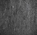 Free Photo - Old Wood Texture