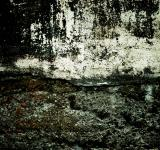 Free Photo - Grunge Wall Texture