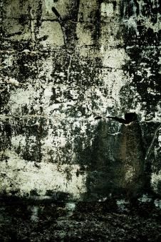 Grunge Wall Texture - Free Stock Photo