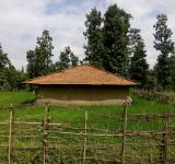 Free Photo - A Hut in Forest